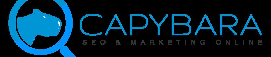capybara-logo-1200x600trans